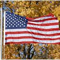 Veterans Day Spirit